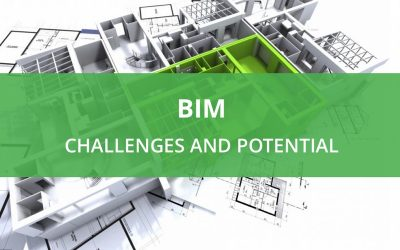 BIM: Challenges and Potential